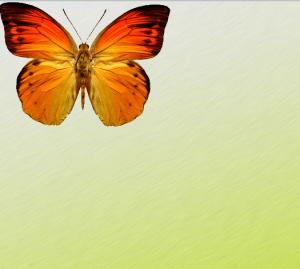 CSS3 multi-background
