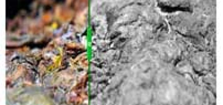 before-after képeffekt